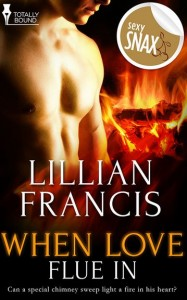 When Love Flue In by Lillian Francis