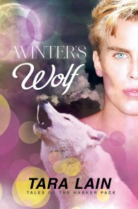Winter's Wolf  (Tales of the Harker Pack #3) By Tara Lain