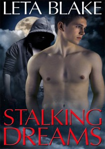 Free Read:  Stalking Dreams by Leta Blake