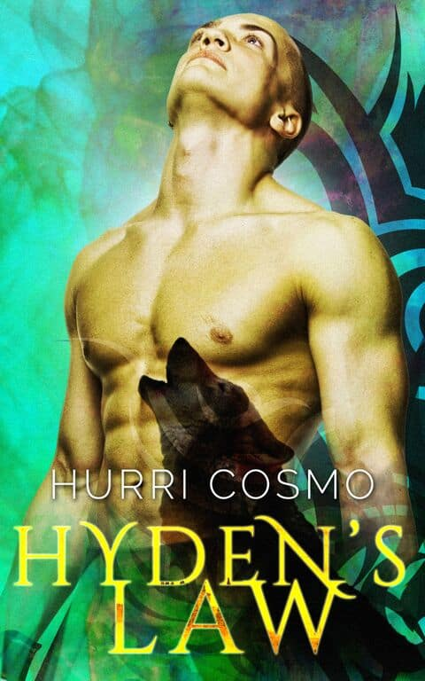 Hyden's Law by Hurri Cosmo