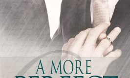 Blog Tour: A More Perfect Union Anthology