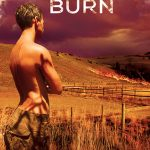 Looking for New Gay Romance Authors? Read Controlled Burn by Erin McLellan!