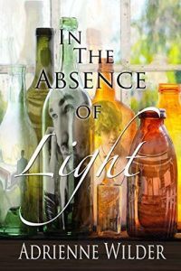Incredibly Moving Gay Romance Book! In The Absence of Light by Adrienne Wilder